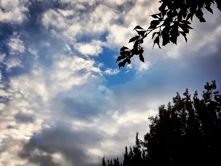 Mattick's Farm sky