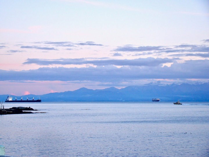 Three ships seen off Dallas Road in the Salish Sea under a pink sunset sky