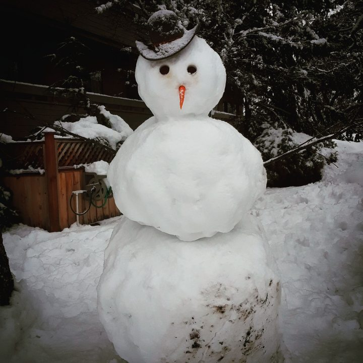 A snowman with jaunty black hat and carrot for a nose